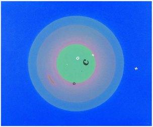 GIANLUCA SGHERRI - Senza titolo, 2007, Olio su tela, 50x60cm